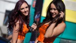 Armor-All-Grid-Girls-CoatesHire-Ipswich300_MG_0697