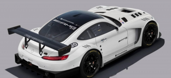 Scott Taylor has signed decorated racer Craig Baird to share his newly purchased AMG GT3 in the Australian GT Sprint and Endurance Series